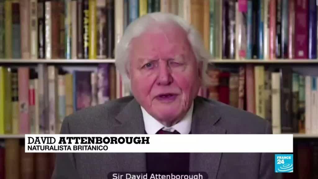 2021-02-24 00:07 'El cambio climático es la mayor amenaza para la seguridad', dijo David Attenborough a la ONU