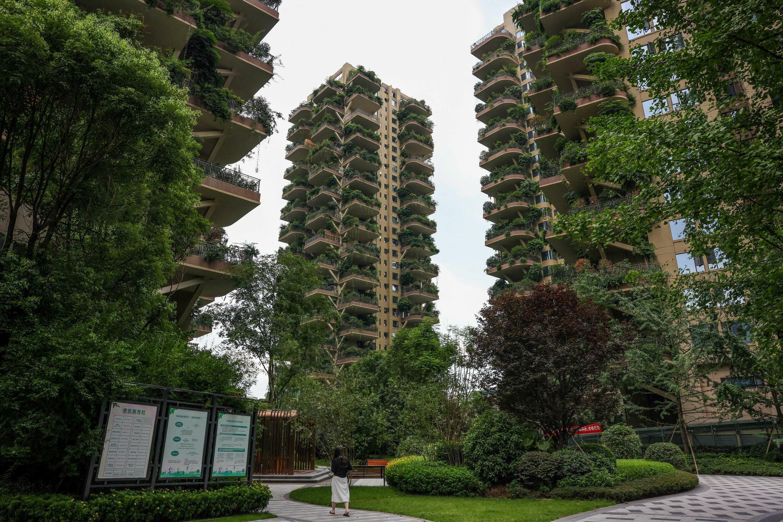 Des bâtiments végétalisés dans un quartier résidentiel de Chengdu, dans le sud-ouest de la Chine, le 12 juillet 2021.