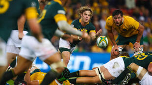 South Africa won the Rugby Championship last year