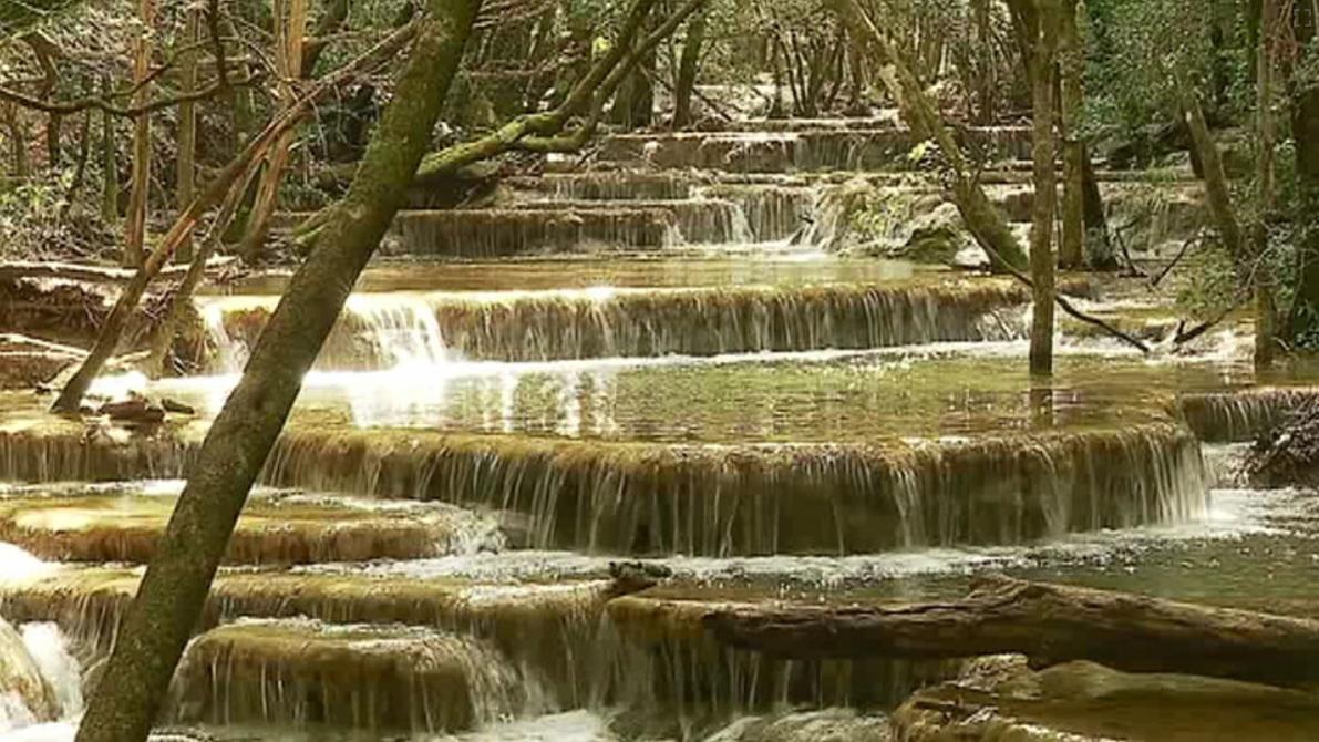 E27 La Sainte-Baume, un oasis en Provence