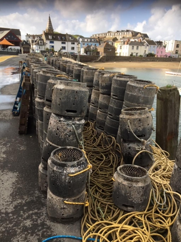 Casiers à homard, sur le port d'Ilfracombe