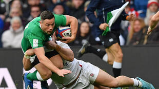 Test rugby could return before the end of the year, according to World Rugby's chief medical officer