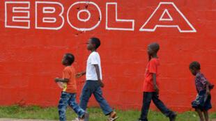 L'épidémie d'Ebola a fait plus de 7 000 morts, selon le dernier bilan de l'ONU du 16 décembre 2014.