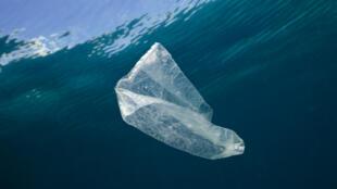 Un sac plastique dans l'océan Pacifique.