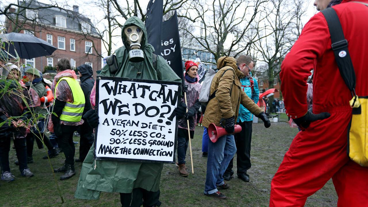 Algunas personas participan en una protesta que pide medidas urgentes para combatir el cambio climático en el centro de Ámsterdam, Países Bajos, el 10 de marzo de 2019.