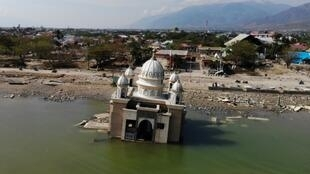 The magnitude 7.5 quake and subsequent deluge razed swathes of coastal Palu last September, killing more than 4,300 people