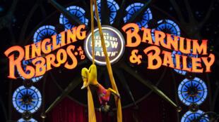 "Le Ringling Bros. and Barnum and Bailey Circus a été créé en 1871 par Phileas Taylor ""P.T"" Barnum."