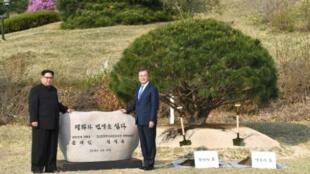 """الزعيم الكوري الشمالي كيم جونغ أون (يسار) والرئيس الكوري الجنوبي مون جاي إن أمام صخرة كتب عليها """"السلام والرخاء زرعا"""" في منطقة الحدود بين الكوريتين في 27 أبريل 2018"""