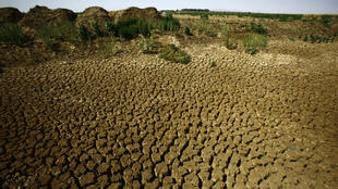 Au nord du Soudan, la sécheresse a fait craquelé les sols.