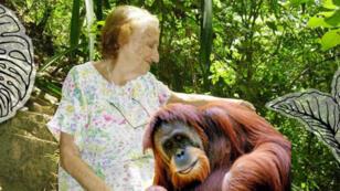 Un montage présentant Francine Neago et un orang-outan, publié sur le site Internet de son association.