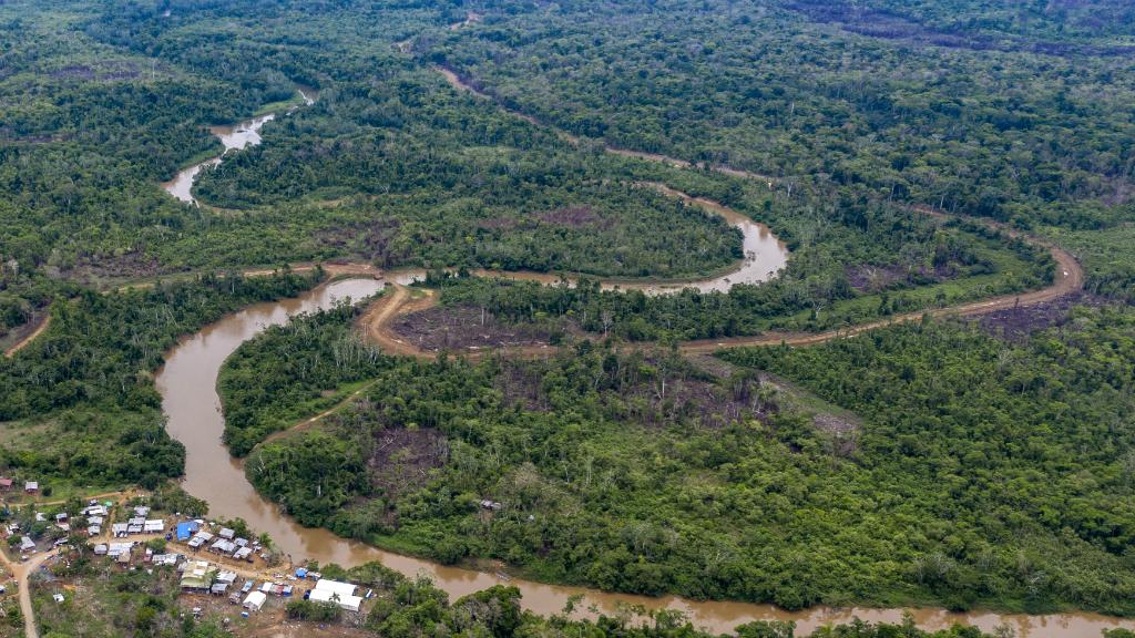 4.000 niños cruzaron en 2019 el tapón del Darién, uno de los lugares más biodiversos y peligrosos del mundo.