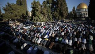 Des musulmans prient à la mosquée al-Aqsa, à Jérusalem