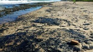 Playa de Coruripe, en el estado de Alagoas, el 7 de octubre de 2019.