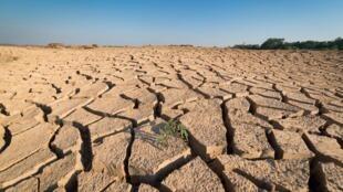 El calentamiento global será más pronunciado de lo esperado y, en el peor de los casos, registrará un aumento de +7°C en 2100, advirtieron científicos.