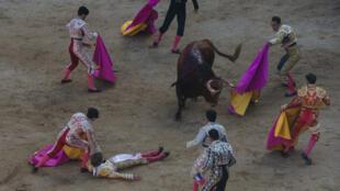 Un matador espagnol étendu sur le sol après avoir été blessé par un taureau, à Pampelune, le 8 juillet 2016.
