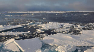 Russia is to again submit a claim for arctic terrorities similar to its 2001 bid.