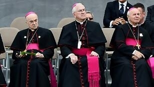 Archbishop Carlo Maria Vigano (L), a formerVaticanenvoy to the United States, says he told Pope Francis of sex abuse allegations against prominentUScardinal Theodore McCarrick in 2013