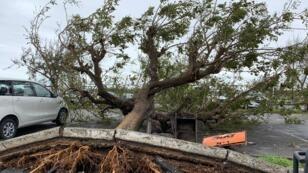 جانب من آثار الإعصار إيداي في مدينة بييرا بموزمبيق 18 مارس/آذار 2019.