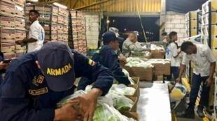 مصادرة أطنان من الكوكايين في منطقة أورابا الكولومبية. 6 آذار/مارس 2018.