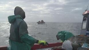 XX NW OOV ECRAN SOUTH AFRICA OVERFISHING