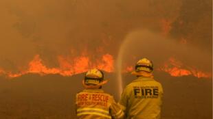 Des pompiers australiens luttant contre les flammes à OldBar, ville côtière de la Nouvelle-Galles du Sud.