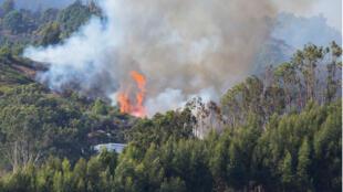Las llamas y el humo del incendio forestal en la isla de Gran Canaria, España, el 19 de agosto de 2019.