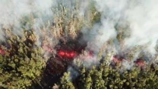 La lava emerge de la tierra después de que el volcán Kilauea hizo erupción en la isla grande de Hawai, causando daños en arboles de la zona. Mayo 4 de 2018.