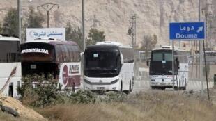 Autobuses utilizados para la evacuación de la población de Guta Oriental, el 22 de marzo de 2018.