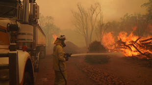 رجال الإطفاء يكافحون حرائق الغابات قرب بيرث في 2 شباط/فبراير 2021 في صورة التقطتها دائرة الحرائق وخدمات الطوارىء في غرب استراليا.