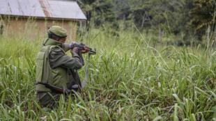 RDC NORD KIVU FARDC VS ADF