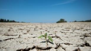 الجفاف يهدد منطقة لوار في غرب فرنسا.