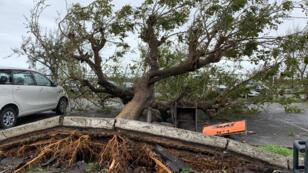 Photographie prise par le Programme alimentaire mondial des Nations unies(PAM) dans la ville de Beira, au Mozambique, le 18mars2019, après le passage du cyclone Idai.