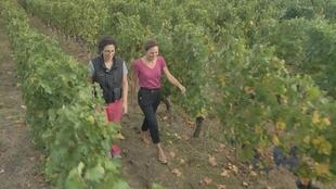 Actuelles - les femmes font leur place dans le monde viti-vinicole