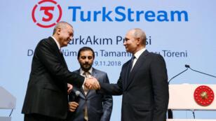 Le président turc, Recep Tayyep Erdogan, et son homologue russe, Vladimir Poutine, lors de l'inauguration du premier tronçon du gazoduc Turkstream.