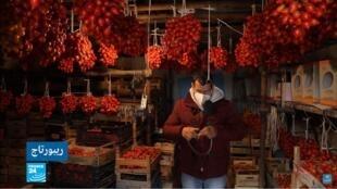 ريبورتاج إيطاليا طماطم