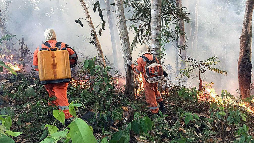 Fotografía cedida por el cuerpo de Bomberos de la ciudad de Porto Velho, que muestra una de las conflagraciones de los grandes incendios que azotan la amazonía brasileña, en Porto Velho, Brasil, el 18 de agosto de 2019.