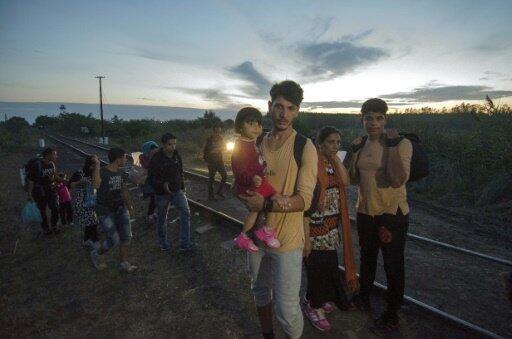 مهاجرون في صربيا