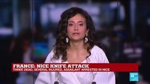 2020-10-29 11:01 Nice attacks: Why do terrorists target France more than EU neighbours?