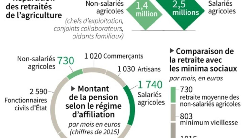 Les Retraites Agricoles Un Dossier En Jachere France 24