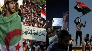 صور مركبة لأربع صور من وكالة الأنباء الفرنسية (أ ف ب ) عن متظاهرين في الجزائر ومصر والعراق والسودان