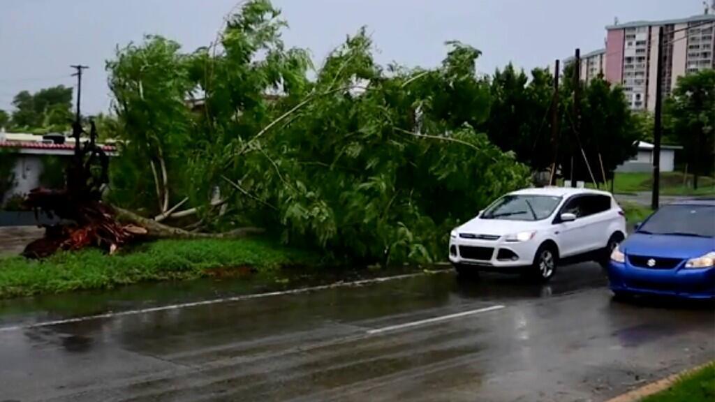 En la imagen aparece un árbol derribado por los efectos de la tormenta en la ciudad de Alto Trujillo, Puerto Rico. El 30 de julio de 2020.