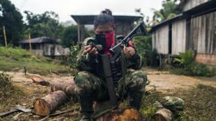 """Un miembro de la estructura """"Omar Gómez"""" del ELN limpia su arma en un campamento en las orillas del rio San Juan en el departamento del Choco. Noviembre 20, 2017."""