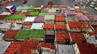 Le Royal Flora Holland d'Aalsmeer, le plus grand marché de fleurs au monde, près d'Amsterdam, le 11 décembre 2018 aux Pays-Bas