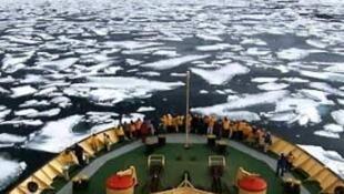 Un bateau se frayant une voie au milieu des blocs de glace.