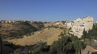 وحدات سكنية في مستوطنة معاليه أدوميم في الضفة الغربية المحتلة في 1 تمّوز/يوليو 2020