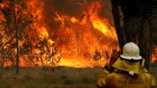 Un pompier face à un incendie, le 9novembre2019, à OldBar, dans l'État de Nouvelles-Galles du Sud en Australie.