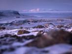 Le Groenland, un carrefour géostratégique pour les États-Unis
