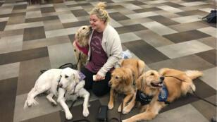 Une victime de Las Vegas a trouvé du réconfort dans les poils d'Angel et de ses potes canins.