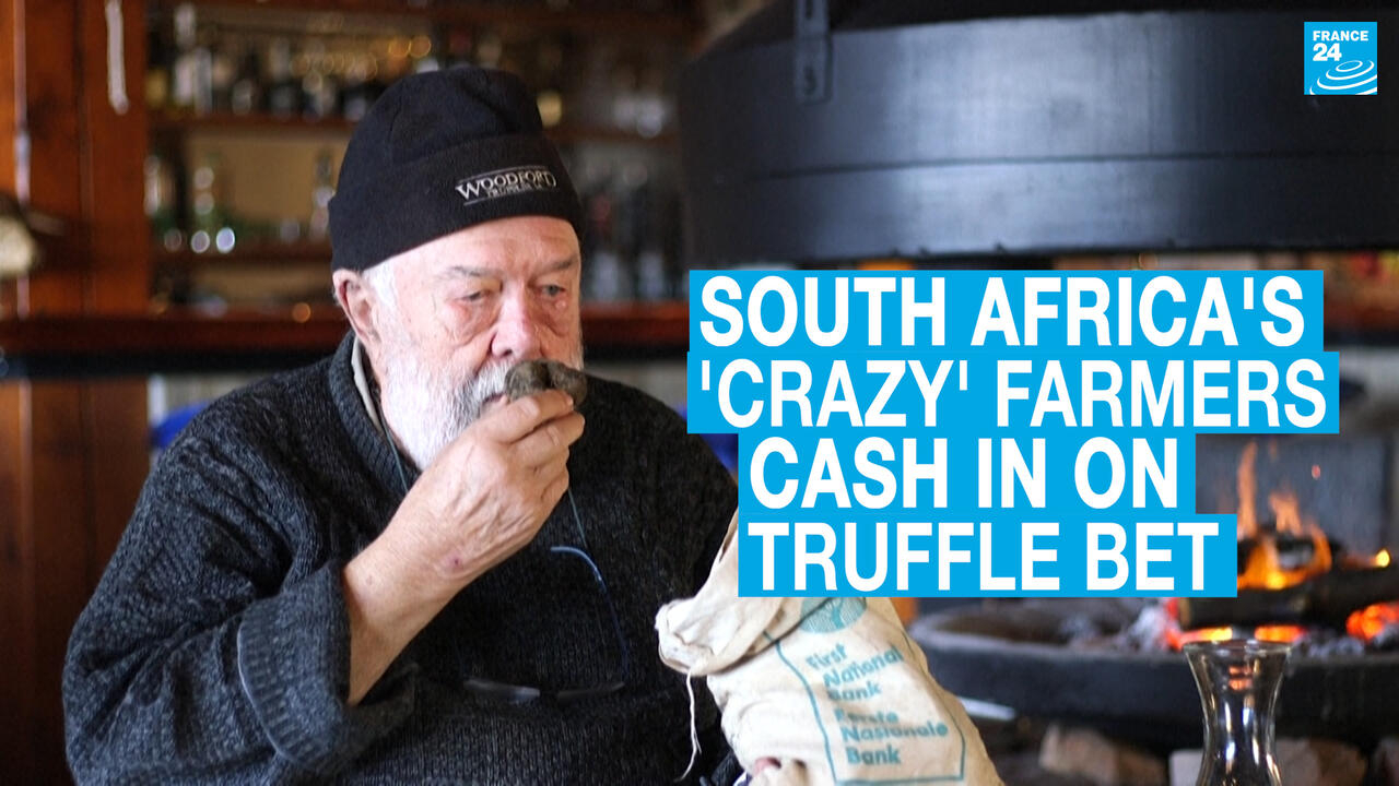 South Africa's 'crazy' mountain farmers cash in on truffle bet - France 24