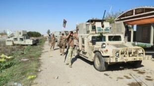 قوات نظامية عراقية تمشط منطقة السجارية في محيط الرمادي في 24 كانون الثاني/يناير 2016